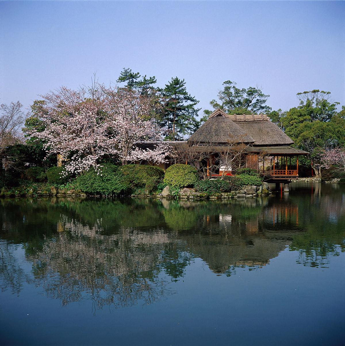 고우노공원(神野公園)